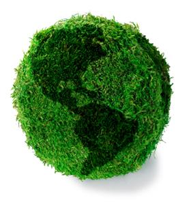 grass_globe